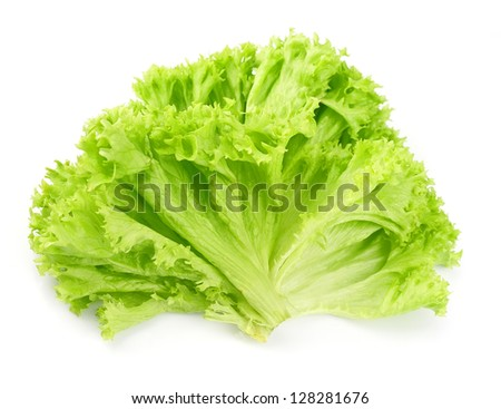 Lettuce salad isolated on white background .Salad leafs - stock photo