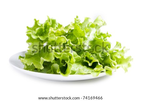 Lettuces leaves on white plate isolated on white background - stock photo