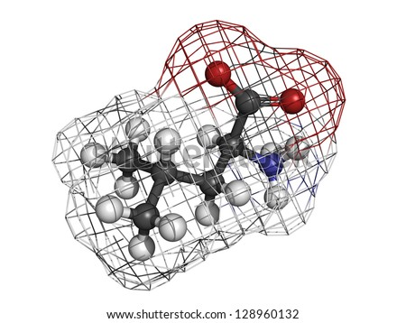 Leucine (Leu, L) amino acid, molecular model. Amino acids are the building blocks of all proteins. Atoms are represented as spheres with conventional color coding: hydrogen (white), carbon (grey), etc - stock photo