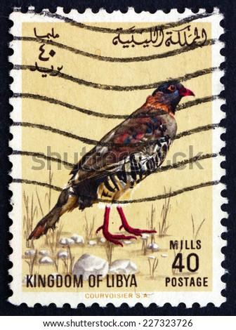 LIBYA - CIRCA 1965: a stamp printed in Libya shows Libyan Barbary Partridge, Alectoris Barbara, Bird, circa 1965 - stock photo