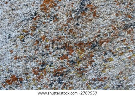 Lichen on Granite Rock Background - stock photo