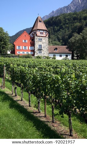 Liechtenstein Vaduz Vineyard with grand house