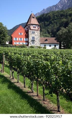 Liechtenstein Vaduz Vineyard with grand house - stock photo
