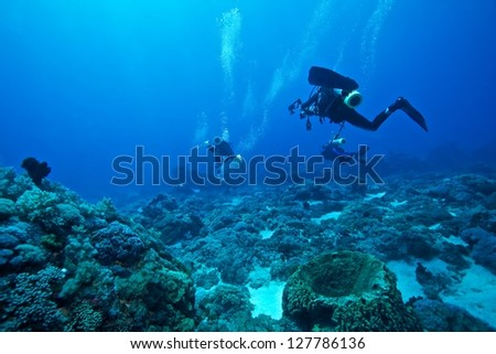 Life under water with diver background in the green island, Taiwan - stock photo
