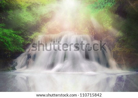 Light andwaterfall in deep forest fantasy dream color
