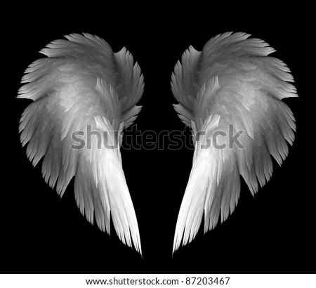 light angel wings on a black background - stock photo