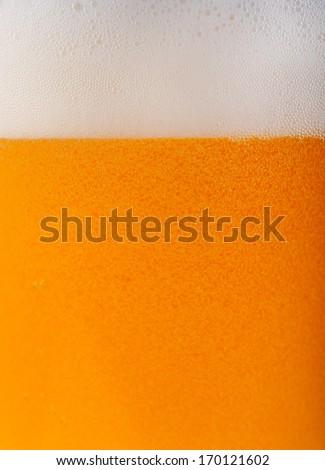 Light beer background - stock photo