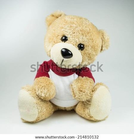 light brown teddy bear on white background - stock photo