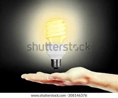 Light Bulb. - stock photo