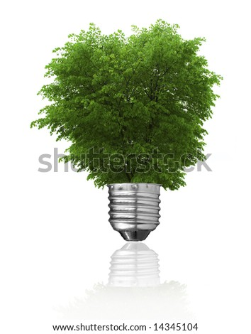 Light bulb and green tree growing isolated on white. Renewable energy, global warming  and ecology concept