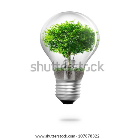 light bulb and the power and nature - stock photo
