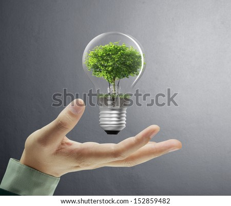 Light bulb, in a hand  - stock photo