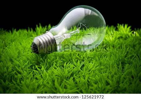 light bulb on green grass - stock photo