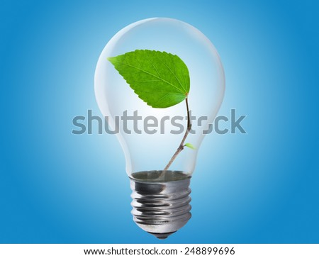 Light bulb with a leaf growing inside. Environment, eco technology and energy concept.