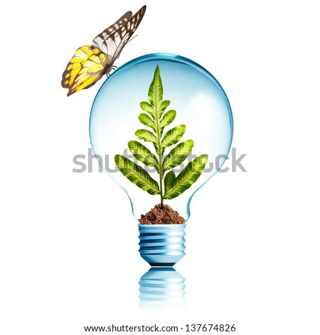 Light Bulb with dirt and green plant sprout inside and butterfly on top - stock photo