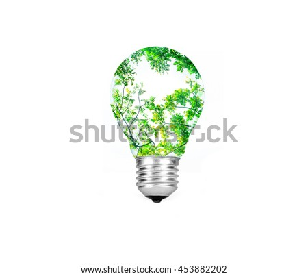 Light bulb with green tree inside  isolated on white background