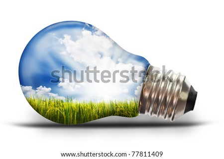 light bulb with paddy rice - stock photo