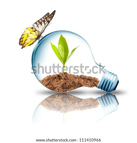 Light bulb with plant inside and butterfly - stock photo