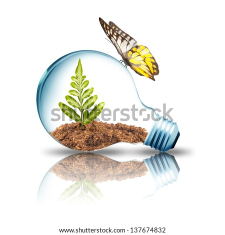 Light bulb with plant inside and butterfly on top - stock photo