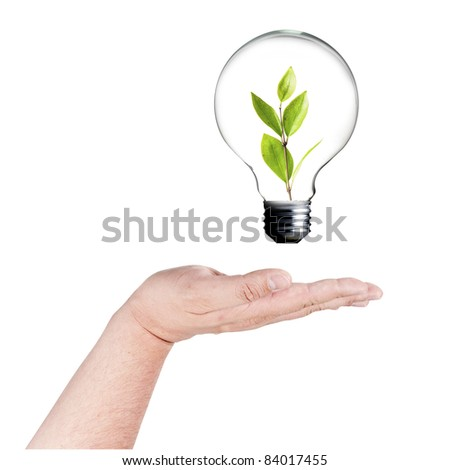 light bulb with plant inside and sun on the back on hand