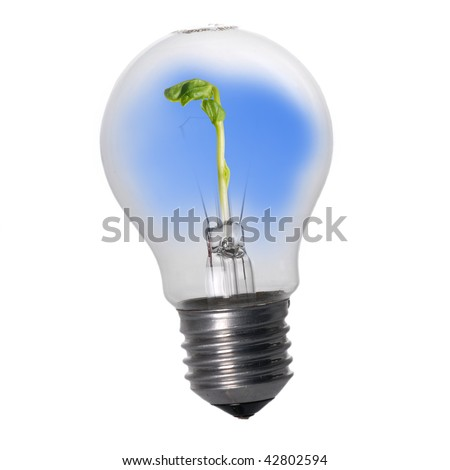 Light Bulb with seedling