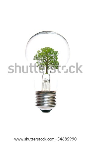 light bulb with tree inside - stock photo