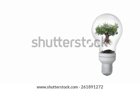 Light bulb with tree inside. Ecology concept - stock photo