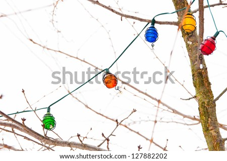 Light garland on bare  tree branches in winter. selective focus - stock photo