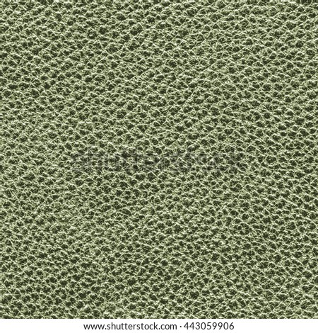 light green leather texture closeup.Can be used for background