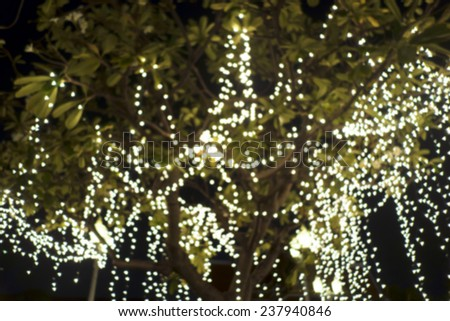 light on a three - stock photo