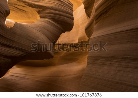 Light on the great face - stock photo