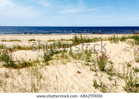 Light sand dunes on Baltic Sea beach
