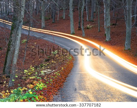 Light trails from car headlights on winding rural road in Swedish beech forest at night