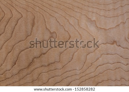 Light Wood Background Texture Curly Maple, Flame Pattern, Figured Lumber Grain - stock photo