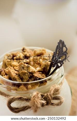 Light yogurt with wholewheat cookie crumbs, shallow DOF, selective focus - stock photo