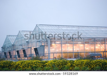 lighted greenhouse in the rain - stock photo