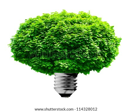 lighting lamp bulb on a green background - stock photo