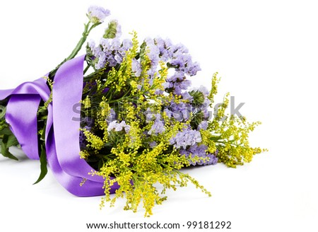 Lilac and yellow flowers on a white background - stock photo