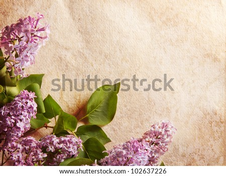 Lilac border or frame against distressed watercolor paper background. Great for  a card, a message or an invitation. Plenty of copyspace. - stock photo
