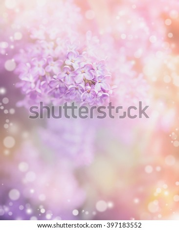 Lilac flowers on beautiful bokeh background. Romantic pastel floral border - stock photo