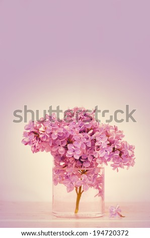 lilac on a light pink background. toning. selective focus lilac in a glass