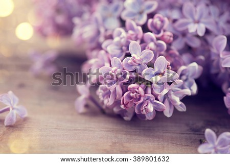 Lilac spring flowers bunch over wooden background. Easter, beautiful violet Lilac flower border design closeup. Wood. Copy space for your text - stock photo