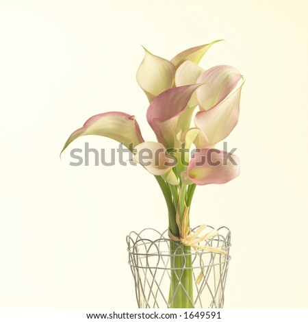 Lilies in a basket - stock photo