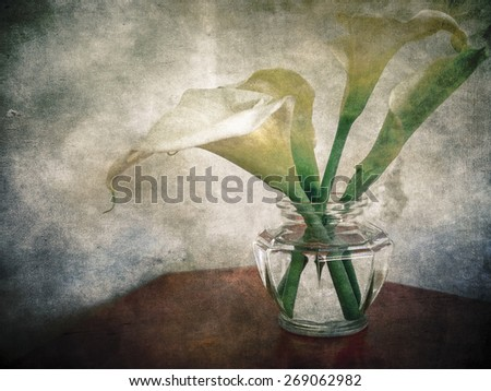 Lilies in a vase on a textured background - stock photo