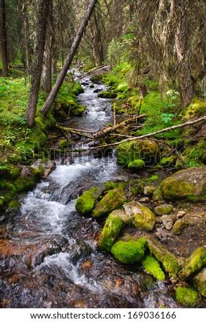 Lillian Lake area of Peter Lougheed Provincial Park Kananaskis Country Alberta Canada - stock photo