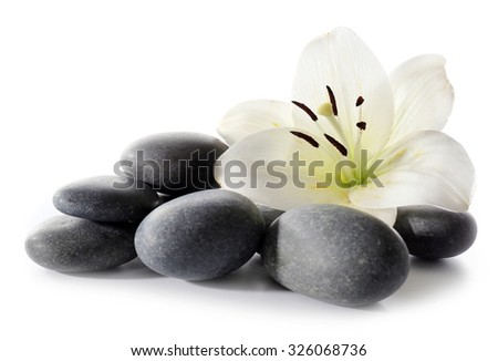Lily and spa stones isolated on white - stock photo