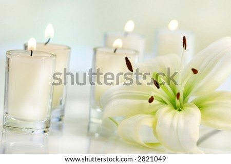 Lily flower with candle on pale background - stock photo