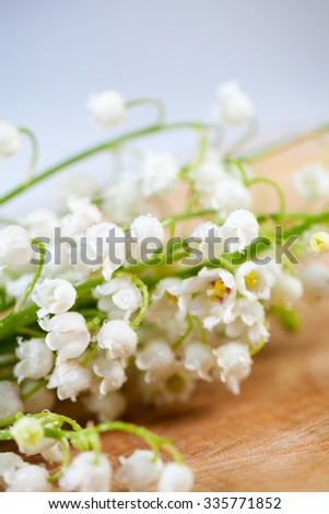 Lily-of-the-valley - stock photo