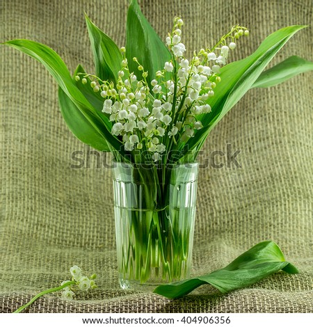 Lily of the valley flowers  on burlap background.  Convallaria majalis.  Shallow depth of field - stock photo