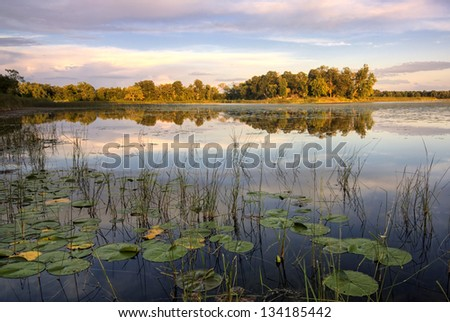Lily pads and reeds on calm reflected lake, Minnesota, home of 10,000 lakes, USA - stock photo